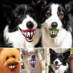 Zábavná loptička pre psíkov